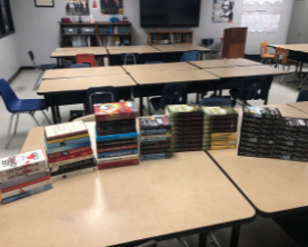 Classroom Library Grant: Striking a Match